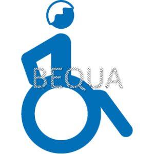 Rollstuhlfahrer älter.png