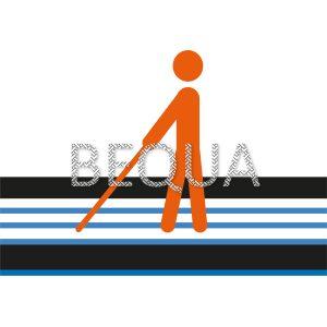 Blinde und Sehbehinderte Leitsystem.png